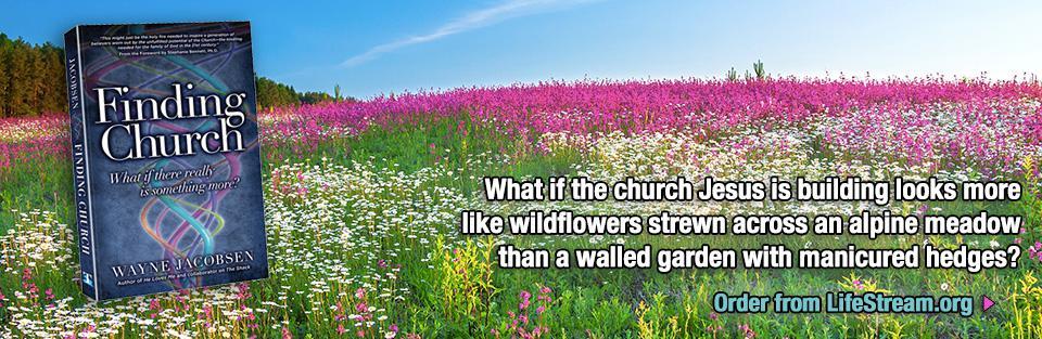 Finding Church - Wildflowers