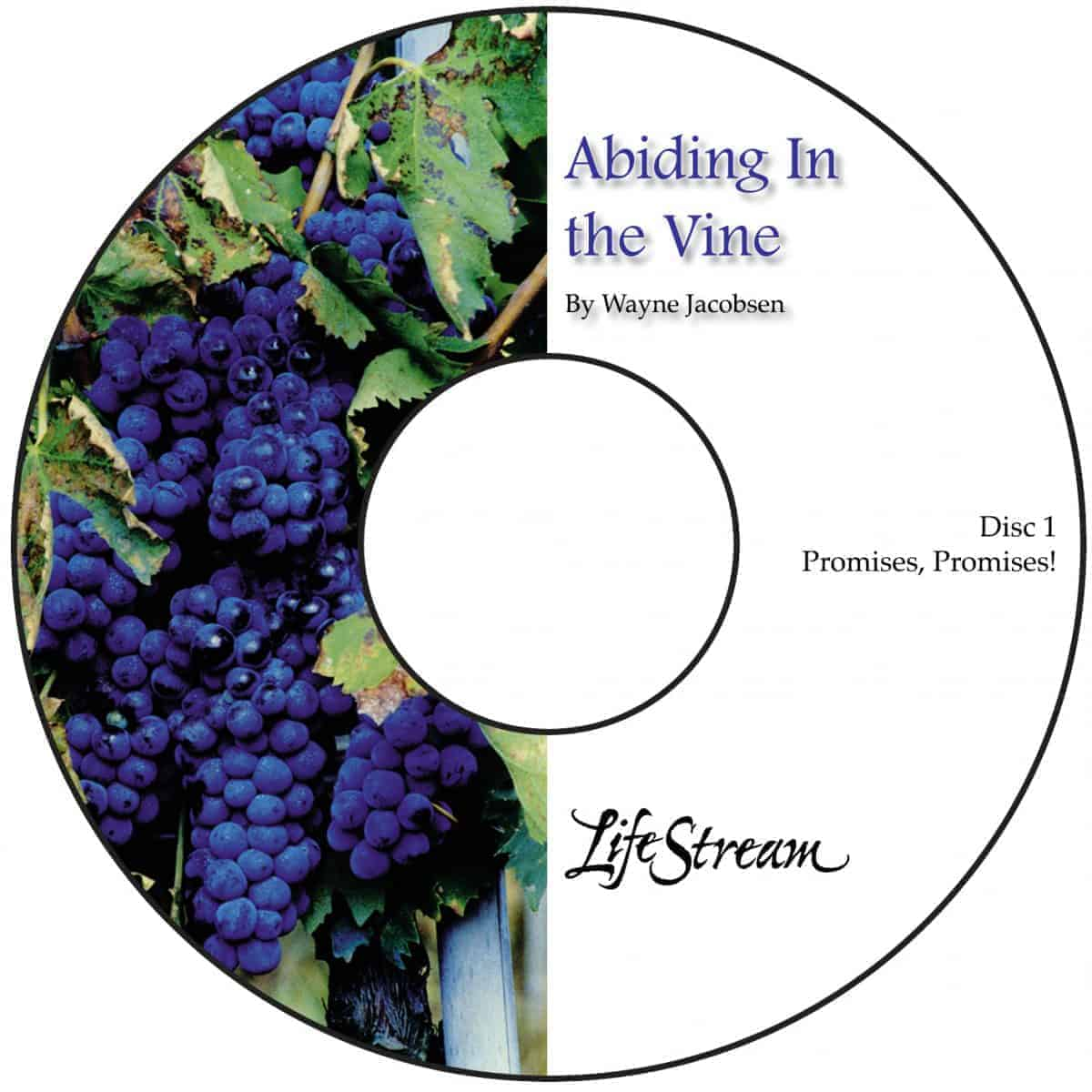 Abiding in the Vine [Audio] by Wayne Jacobsen