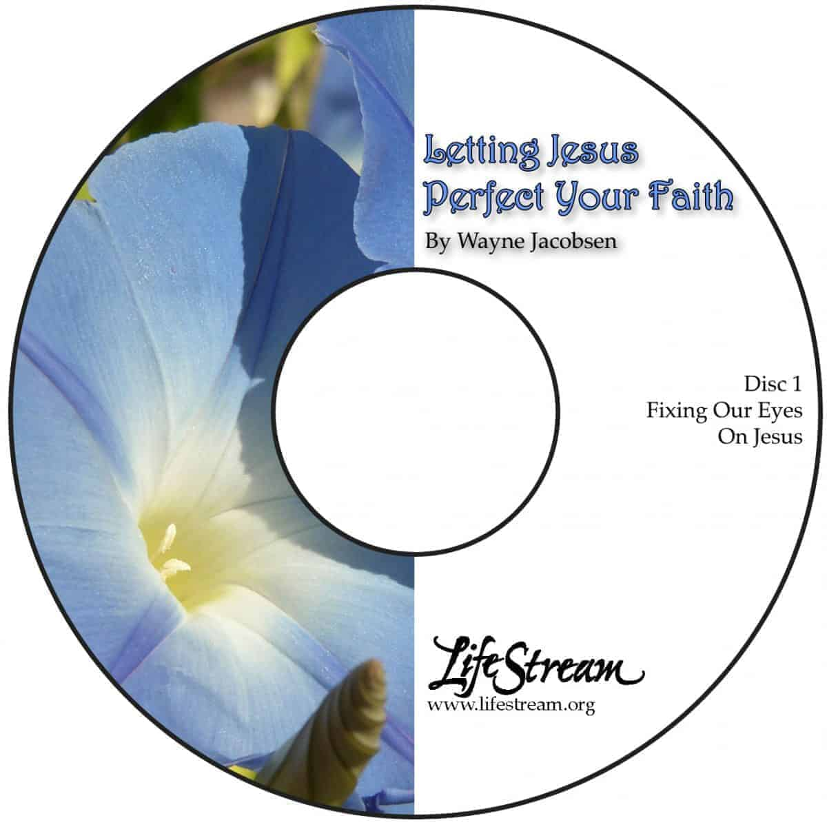 Letting Jesus Perfect Your Faith [Audio] by Wayne Jacobsen