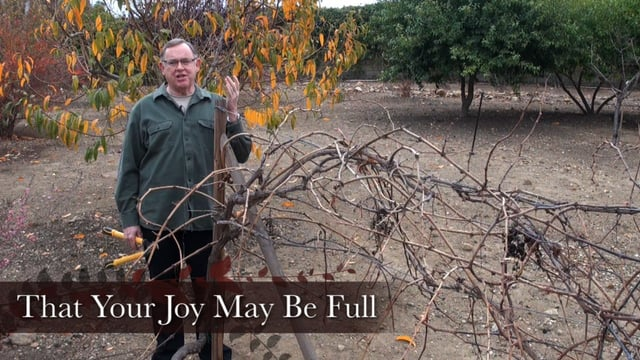 Engage 23: That Your Joy May Be Full